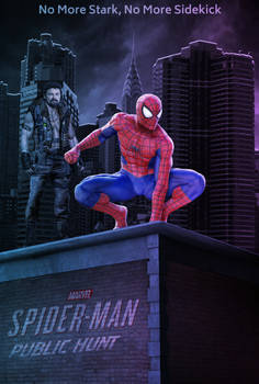 Spider-Man 3: Public Hunt