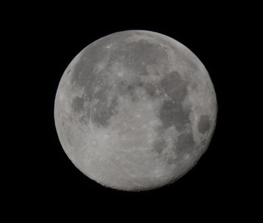 luna by cench