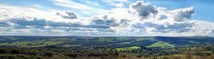 Green Yorkshire