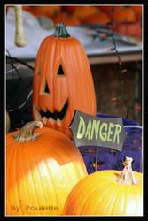 Danger by shutterbugmom