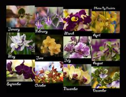 ABigger Better Orchid Calendar by shutterbugmom