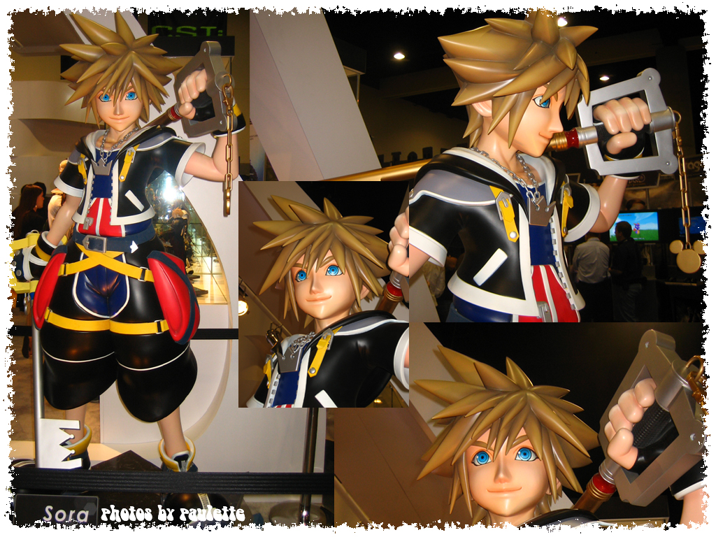 sora goes to comic con by shutterbugmom