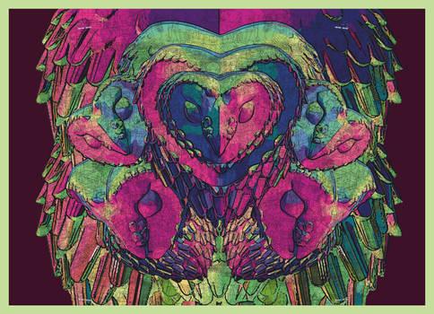 Barn Owl on acid