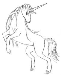 -' Unicorn '-