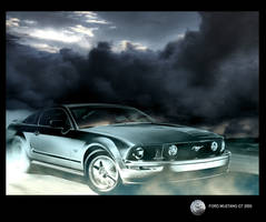 Mustang on the run