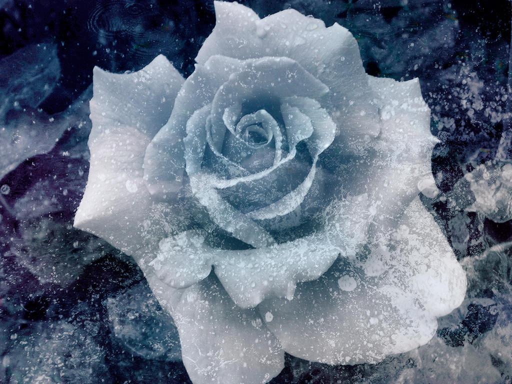 Ice's Minion