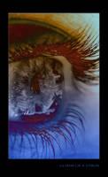 Glimse of a Vision