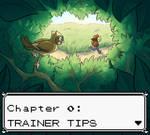 Kurukkoo! Chapter 0: Trainer Tips