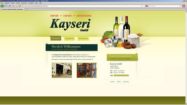 Kayseri GmbH - Website