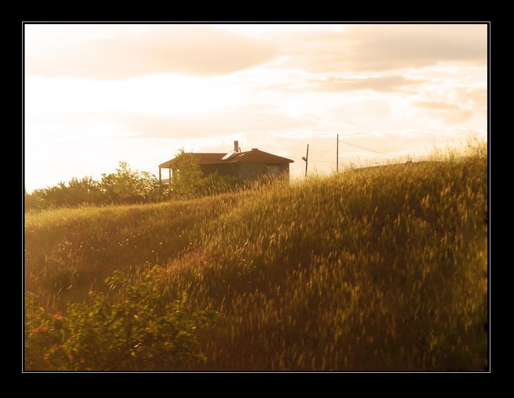 Warm Summer Dreams by Sunlit-Soul