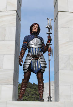 Dragon Age 2 Grey Warden mage - front view
