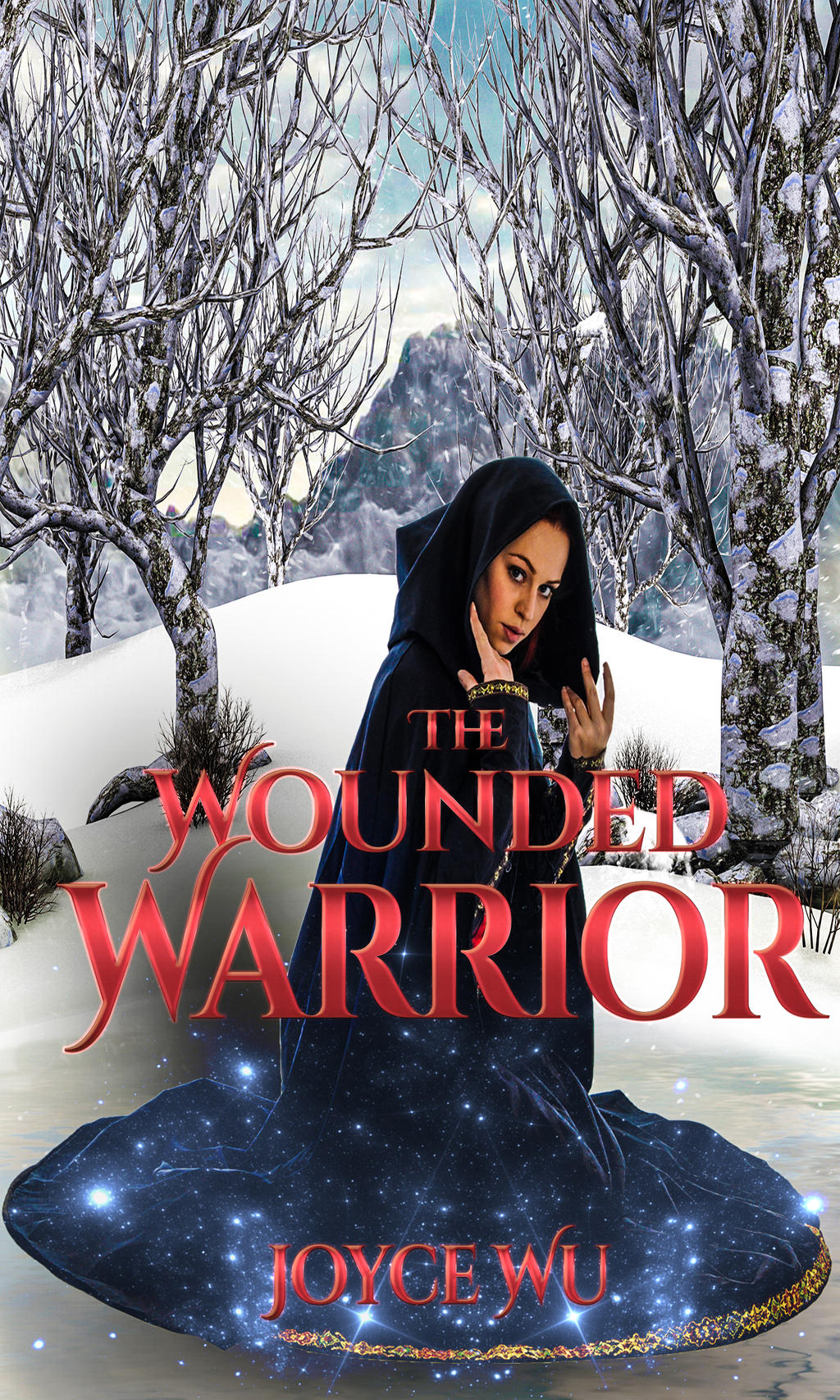 The Wounded Warrior by AndromedaNova
