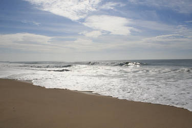 ocean beach stock 5628