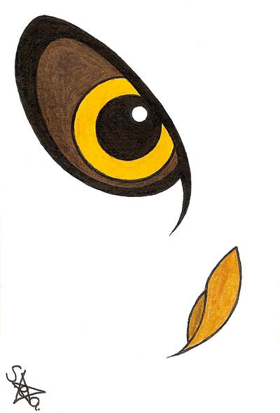 Owl Eye by Shanna-the-Freak