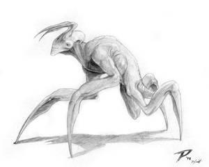 Flesh-Ant