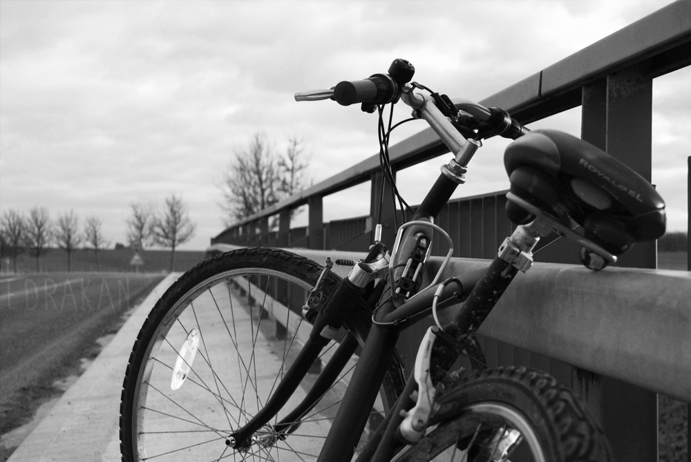 Cold Cycling by Edrakan