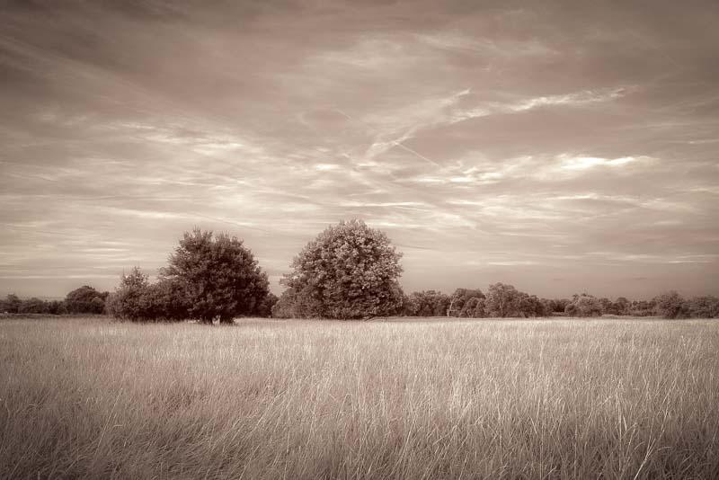 Serenity by KarelSopek