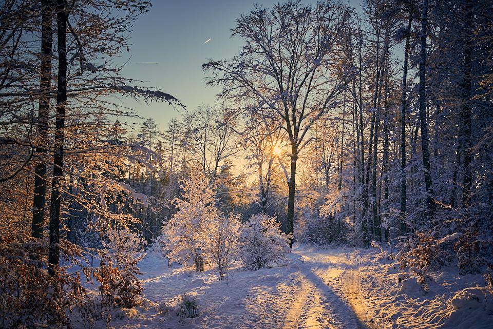 Winter morning by KarelSopek