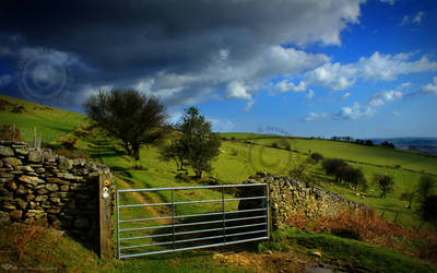Rolling Hills Of Wales by l8