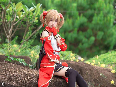 Sword art online Silica cosplay