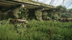Crysis 3|Rusty trains