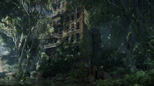 Crysis3|Into the forest