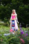 Toon Zelda at Fanime 2010