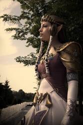 Hyrule's Pensive Princess by akuriko
