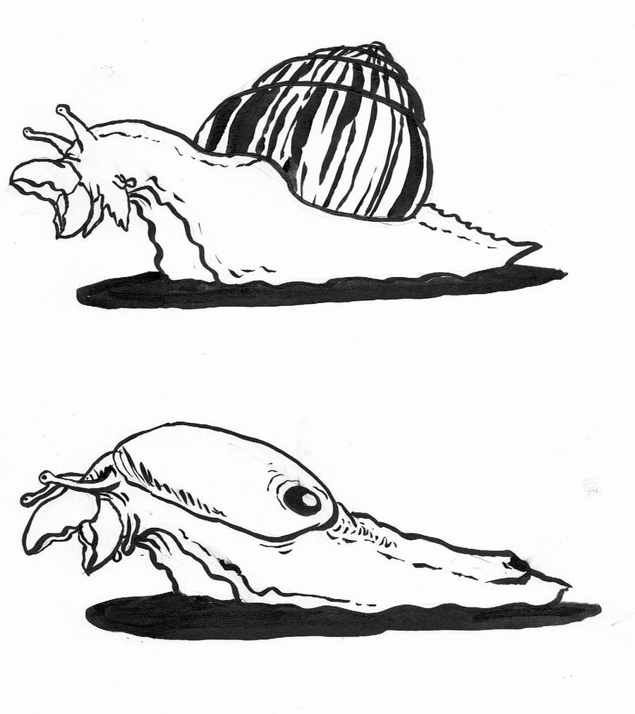 beak-snail and slug by Kampfkewob