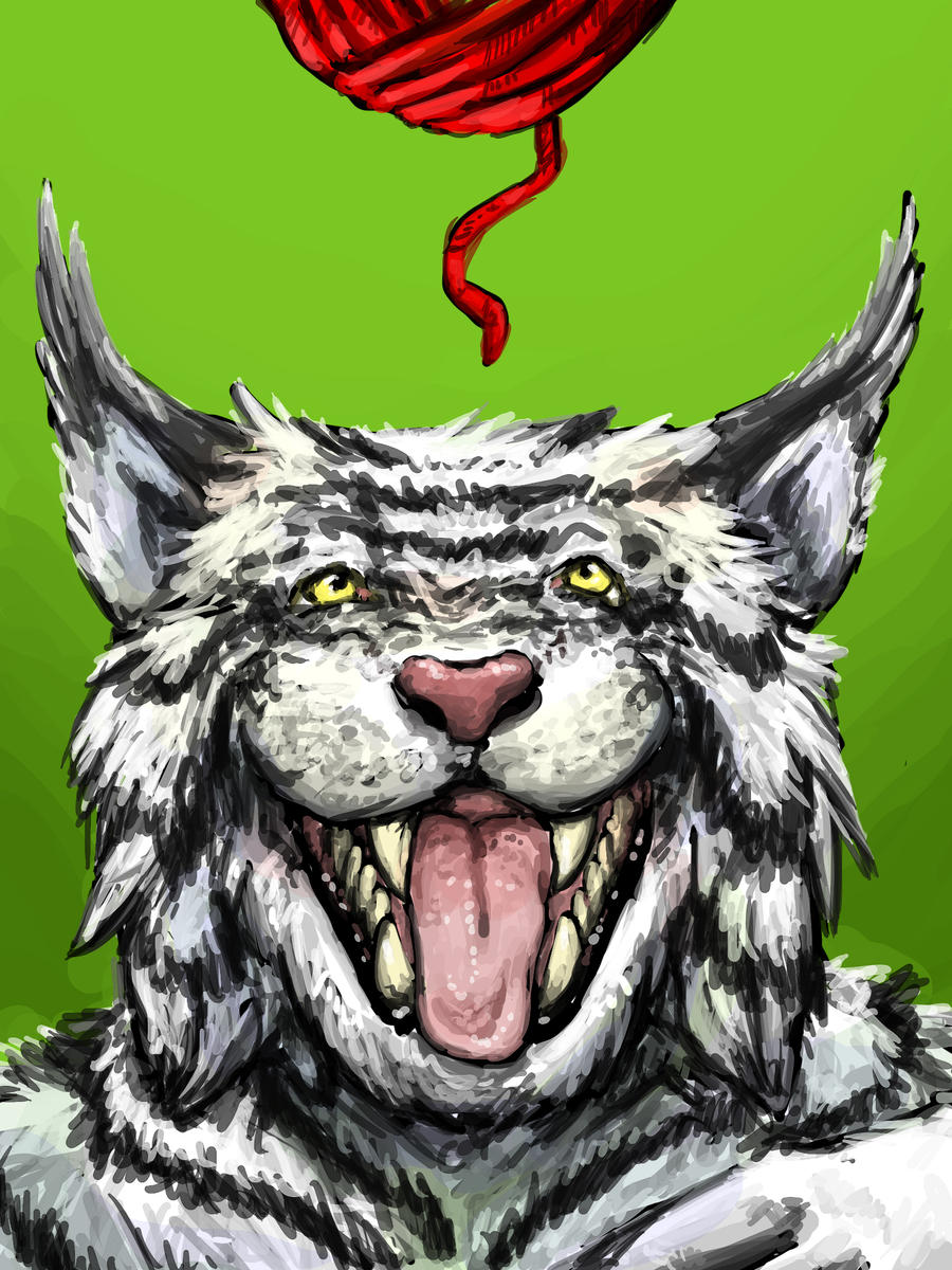 Cat want yarn by Kampfkewob