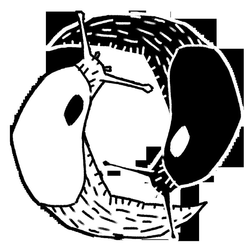 Slug Duality by Kampfkewob