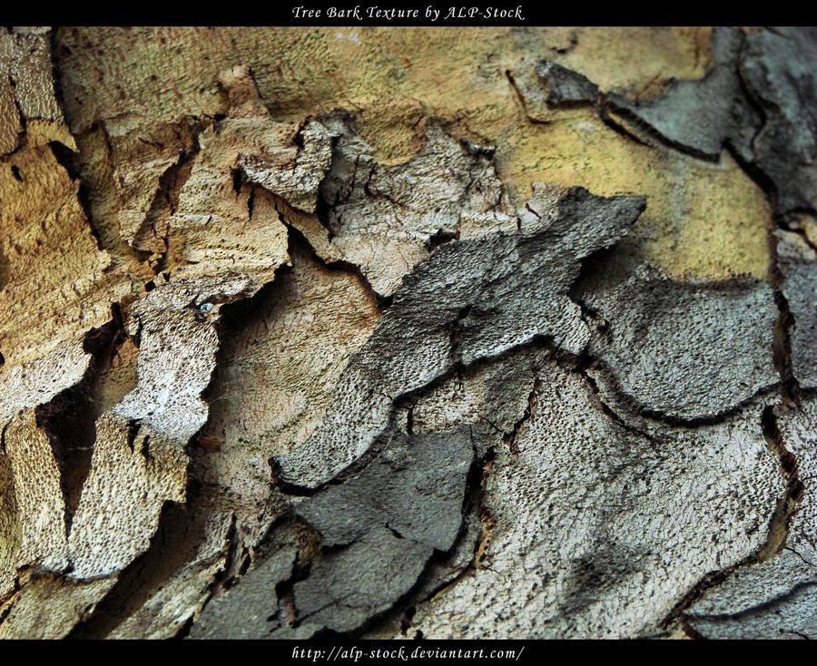 Tree Bark Texture 01 by ALP-Stock
