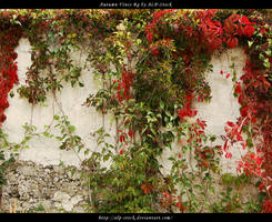 Autumn Vines BG 05 by ALP-Stock