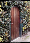 Garden Door by ALP-Stock