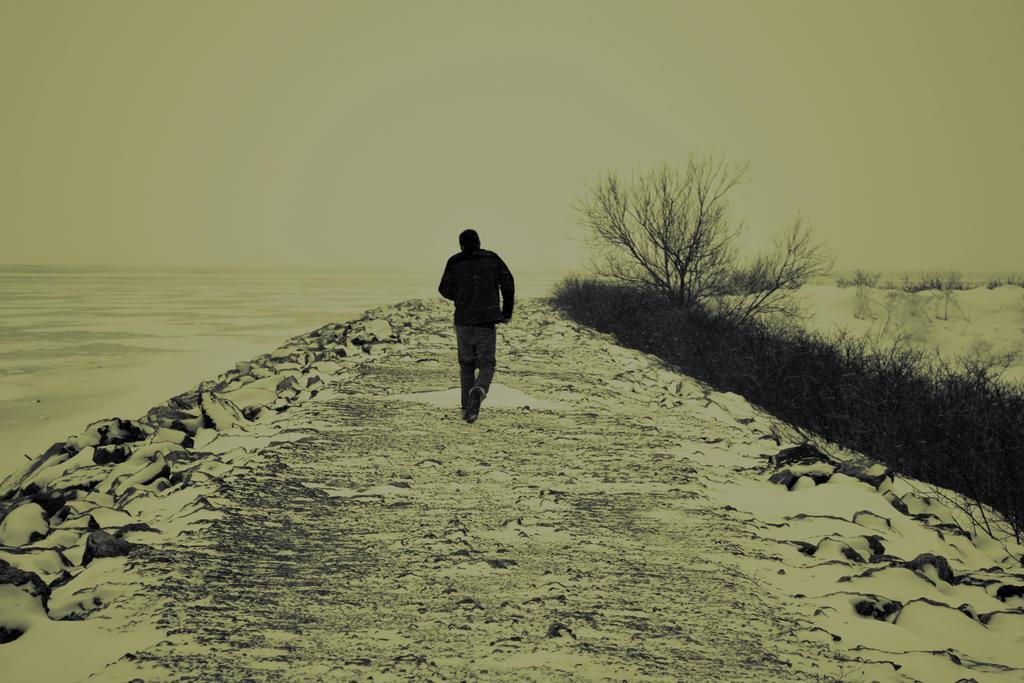 Lifes Journey by TifaCrimsonWings