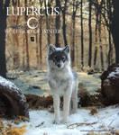 Lupercus - gray wolf