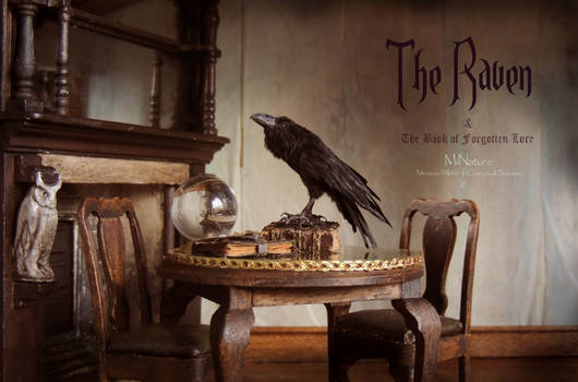 The Raven and The Book of Forgotten Lore