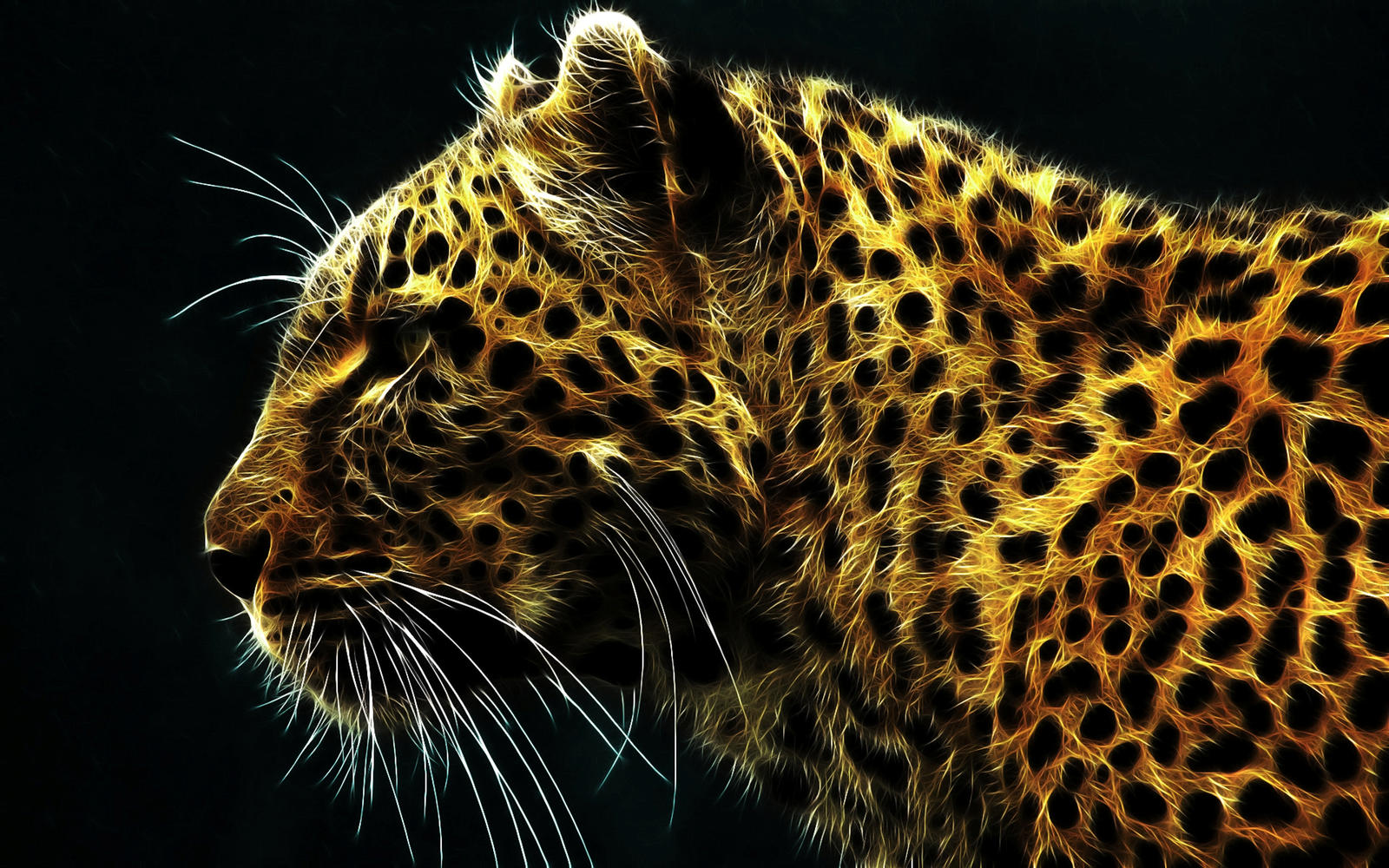 Cheetah In Hd By Deeprana94 On Deviantart