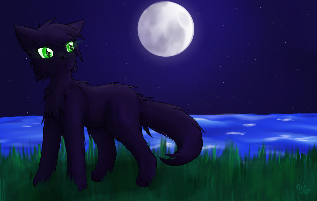 Hollyleaf Contest Entry by MidnightTheUmbreon
