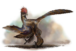 Anchiornis huxleyi by cheungchungtat