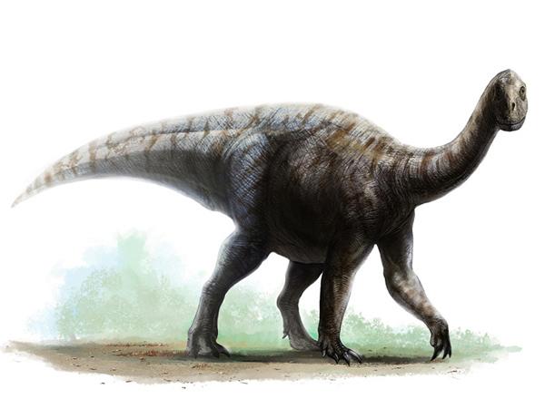 Lufengosaurus (@Lufengosaurus)   Twitter