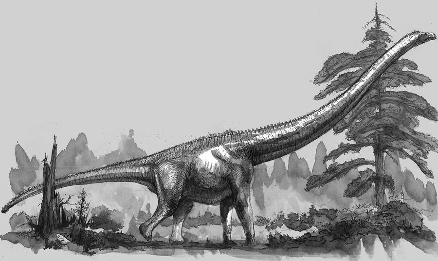Mamenchisaurus constructus by cheungchungtat