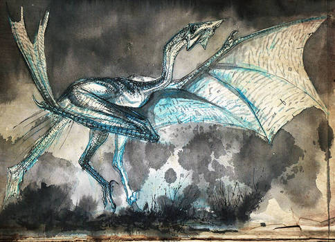 tat-dragon-08