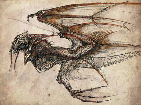 tat-dragon-12