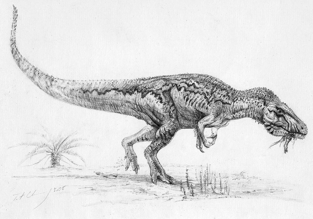 Carcharodontosaurus iguidensis by cheungchungtat on deviantart for Carcharodontosaurus coloring page