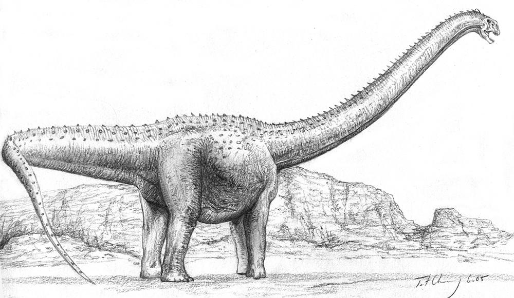 Nemegtosaurus mongoliensis by cheungchungtat