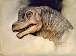 Study of JP1 Brachiosaurus Head