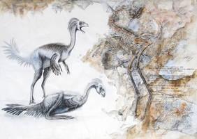 Jehol Biota--Incisivosaurus gauthieri by cheungchungtat