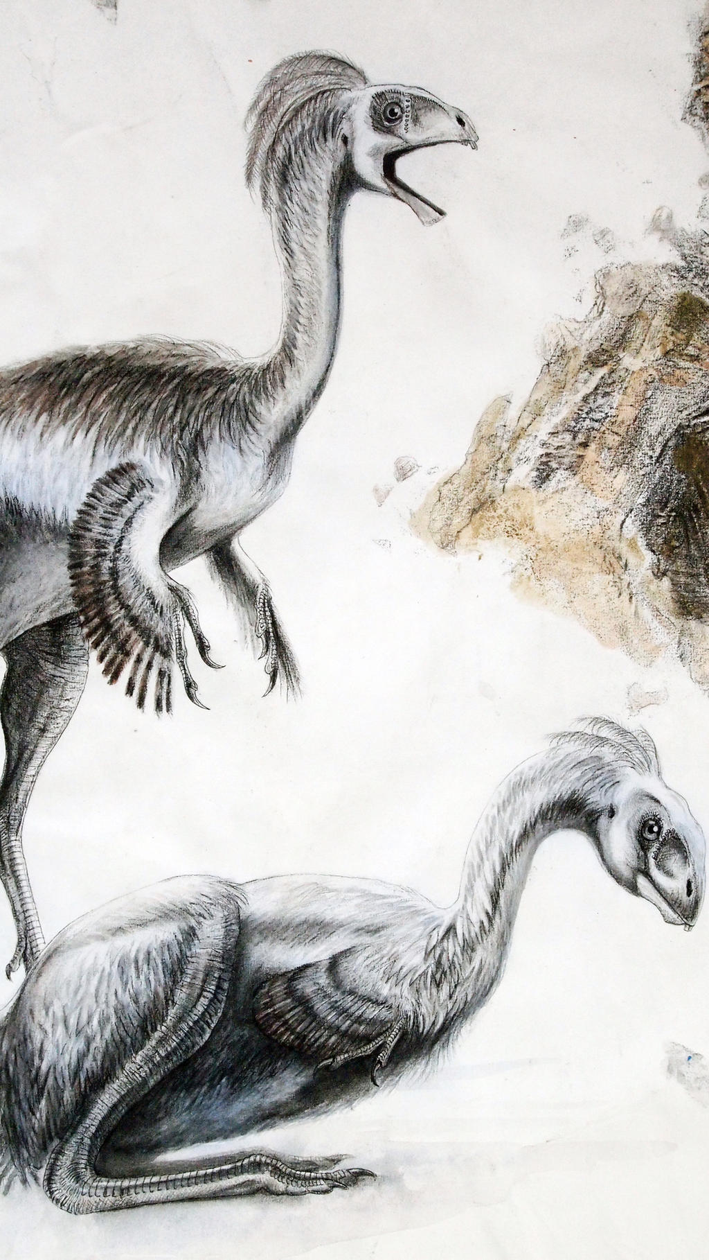 Jehol Biota--Incisivosaurus gauthieri--Close-up