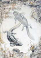 Jehol Biota-- Jeholotriton paradoxus by cheungchungtat